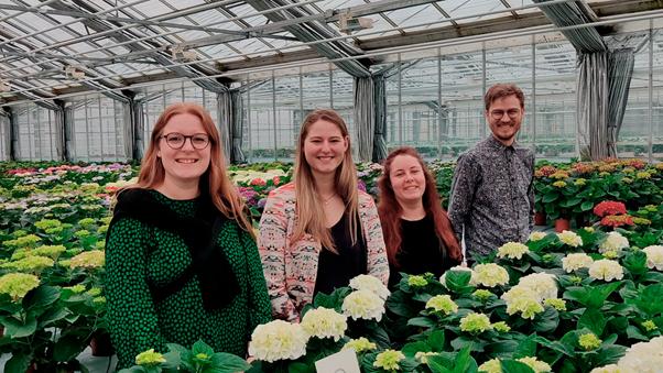 Fire seje talenter bidrager med langsigtede løsninger, som Schroll Flowers kan bruge langt ind i fremtiden